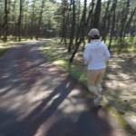 阿波岐原森林公園で綾照葉樹林マラソンの練習