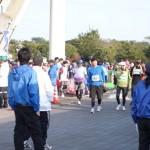 青島太平洋マラソンの駐車場について