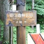 椿山森林公園まで、あともう少し